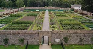 Small Picture Park yourself in Dublins finest garden