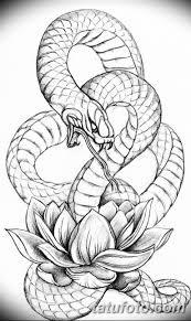 тату змея эскизы мужские 09032019 013 Tattoo Sketches