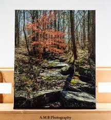 Artisan Light And Landscape