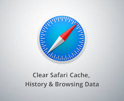 Clear Safari History and Website Data in iOS