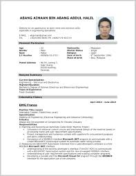 Resume Samples Great Samples Of Resume 24 Resume Sample Ideas 19