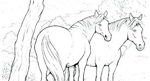 Coloring Pages Free Printable Horse Coloring Pages Head Wild Free