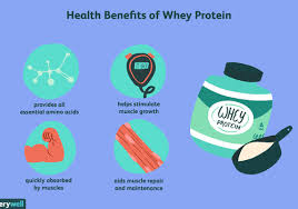 find the best whey protein powder for