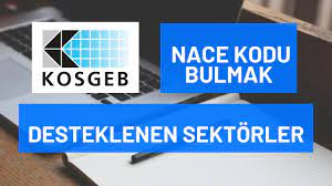 KOSGEB Desteklenen Sektörler | NACE Kodu Nedir? Nasıl Bulunur? 2021 -  YouTube