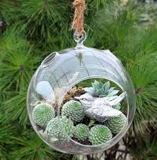 Decorative Hanging Glass Balls Stunning Hanging Glass Balls By Decorative Travelward