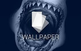 shark attack wallpaper. Brilliant Shark Android Wallpaper Sharks To Shark Attack Wallpaper I