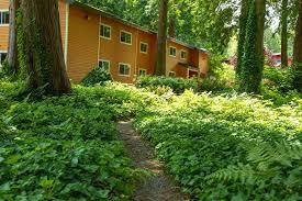 semi detached house garden residen end 4 16 2019 4 53 am