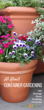 container garden. Everything You Need To Know About Container Gardening Garden S