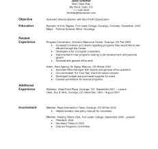 Sample Of Combination Resume Format Sample Combination Resume Format Template Word Templates Example 1