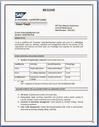Resume Format Pdf Inspiration Best Job Resume Format Pdf Lezincdc
