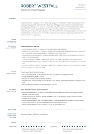 Examples Of Public Relations Resumes Relationship Manager Resume Samples And Templates Visualcv