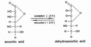 also glucose oxidase helps the conversion of ascorbic acid in dehyrdoascorbic acid