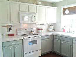 Sage Green Kitchen Cabinets With White Appliances Taraba Home Review