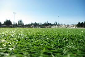grass soccer field. Turf Soccer Field Grass