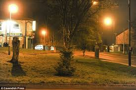 absolutely nicking lighting idea. Tinsel Town: At One Point, The Fairy Lights On Tree In Micklehurst ( Absolutely Nicking Lighting Idea L