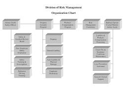 Risk Management Organizational Chart Templates At