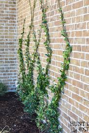 build a diy wire trellis on a wall