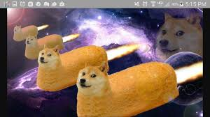 doge twinkie follow your dreams. Unique Twinkie The Amazing Doge Twinkies Are Coming In 2020 October 21 Throughout Doge Twinkie Follow Your Dreams M