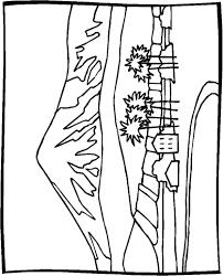 Kawaii Unicorn Kleurplaat Manga Anima Ausmalbilder Fr Erwachsene