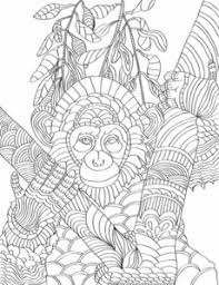 coloring book nature patterns for creativity and calm chimpanzee