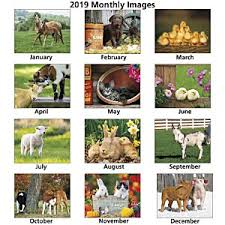 real baby farm animals. Perfect Baby Baby Farm Animals Calendar  Spiral Image 1 Of With Real