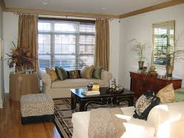 traditional living room window treatments. Brilliant Room Traditional Living Room Window Treatments Great Windows  Throughout M