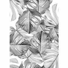 Behang Monstera Zwart Wit Vliesbehang 974x280cm 2 Sheets