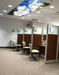 natural light office. While Being Starved Of Natural Light Is More A Problem For Workers Crammed Into The Windowless Open Office Than Managers Lounging In Well-lit Corner H