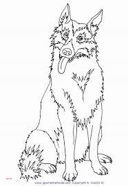 Disegni Di Animali Da Stampare E Colorare Di Lusso Disegni Animali
