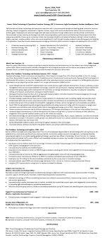 Attractive Resume Services San Jose Ca Model Resume Ideas