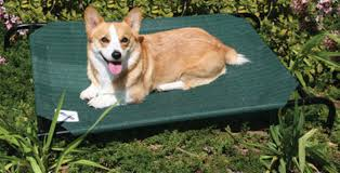 Coolaroo Pet Bed Elevated Pet Bed