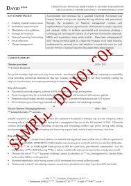 Sample Cfo Resume Resume For Your Job Application