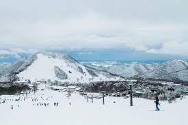 大山 スキー 場