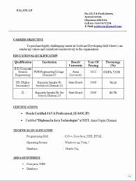 Great Resume Format Beauteous 28 Great Resume Format For Diploma Holders PelaburemasperaK