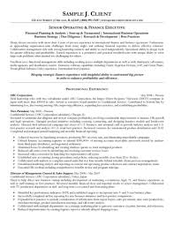 Director Level Resume Examples