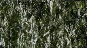 nori sheet nori sheet seaweed dried seaweed background texture image stock