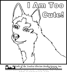Small Picture dog color pages printable Husky Coloring Sheets dog pic