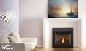 napoleon fireplace idea