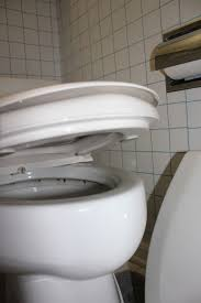 picture of install toilet seat hose