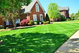 Aprenda como plantar grama e aprimore seu jardim. Como Cuidar Do Gramado Clique Arquitetura Seu Portal De Ideias E Solucoes