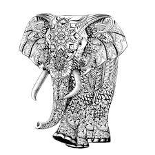 2000x2000 modern botanical line drawings 2000x2000 modern botanical line drawings 4 736x737 elephant mandala henna coloring page