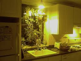 over the sink kitchen lighting. kitchen lighting over sink light originally uploaded ceonyc food share the
