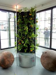 plants on walls vertical garden systems aquaponic vertical vegetable