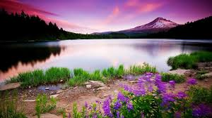 cool colorful nature photography. Plain Nature Colorful Nature HD Wallpapers Pictures In Cool Photography S