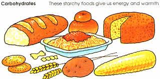 grains food group clipart. Unique Clipart Carbohydrate And Grains Food Group Clipart