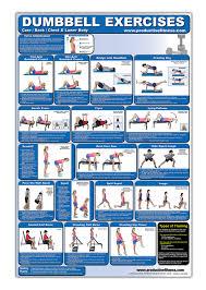 Dumbbell Exercises For Men Chart Laminated Dumbbell Exercise Poster Chart Lower Body Core
