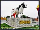imagem de Sanhar%C3%B3+Pernambuco n-3