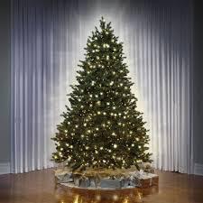 Dual Led Light Christmas Tree The Worlds Best Dual Light Balsam Fir 6 5 Full