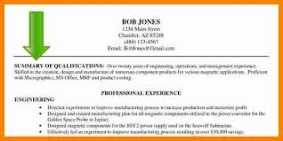 Resume Summary Statement Examples Sarahepps Com