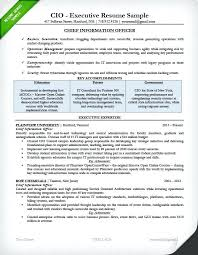 Executive Cover Letter Examples Executive Cover Letter Examples Project Management Cover Letter